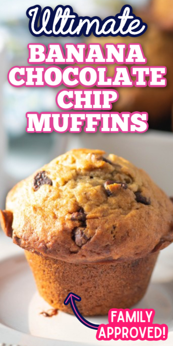 This is the best Banana Chocolate Chip Muffin recipe! Super moist and easy to make, these muffins are perfect for breakfast, brunch or even an afternoon snack! #bananachocolatechipmuffins #easybrunchrecipes #easymuffinrecipes #gogogogourmet via @gogogogourmet