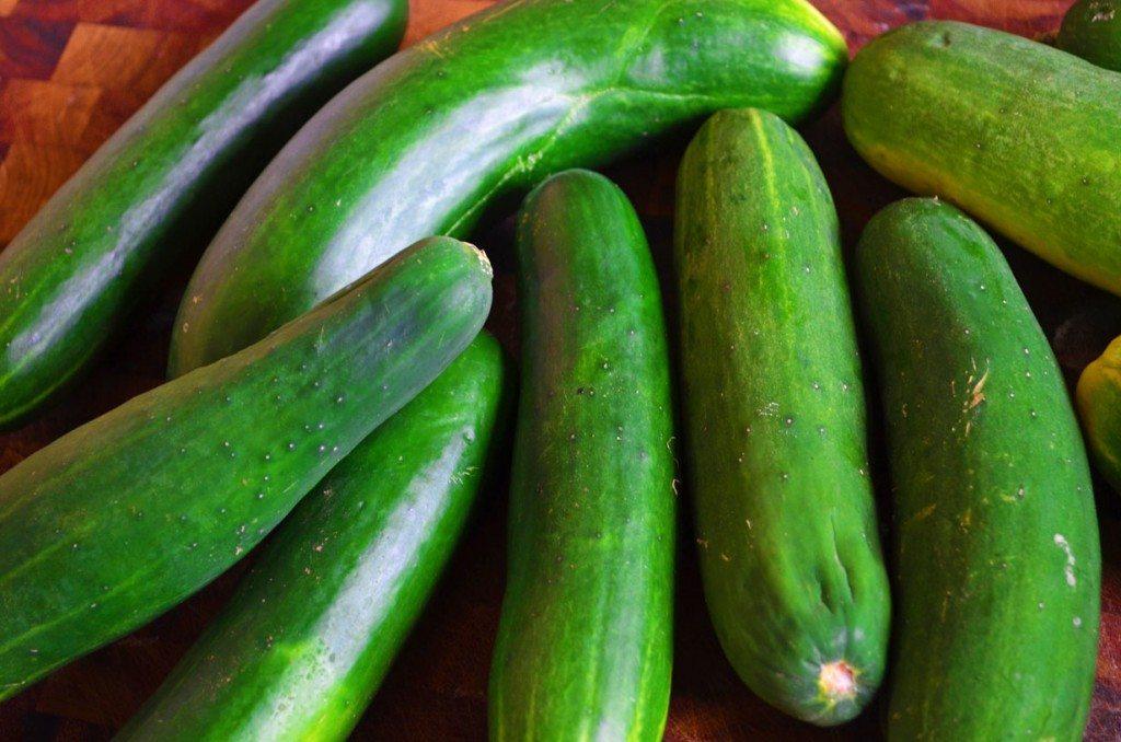 Refrigerator Pickles | Go Go Go Gourmet @gogogogourmet