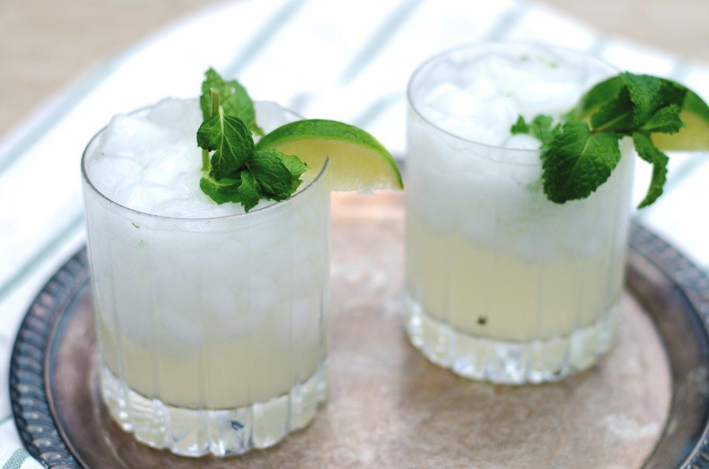 Friday at Five: The Southside Cocktail (A Gin Mojito!) • Go Go Go ...