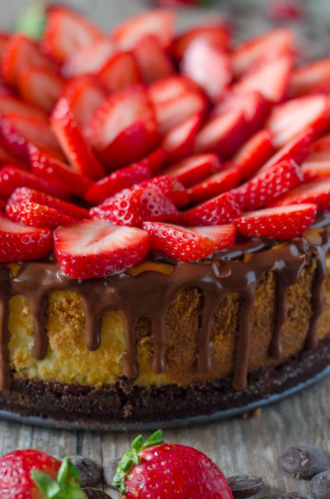 Chocolate Covered Strawberry Cheesecake - chocolate cookie crust, a layer of chocolate ganache, topped with a not-too-dense, not-too-sweet cheesecake, more ganache and fresh strawberries | Go Go Go Gourmet @gogogogourmet