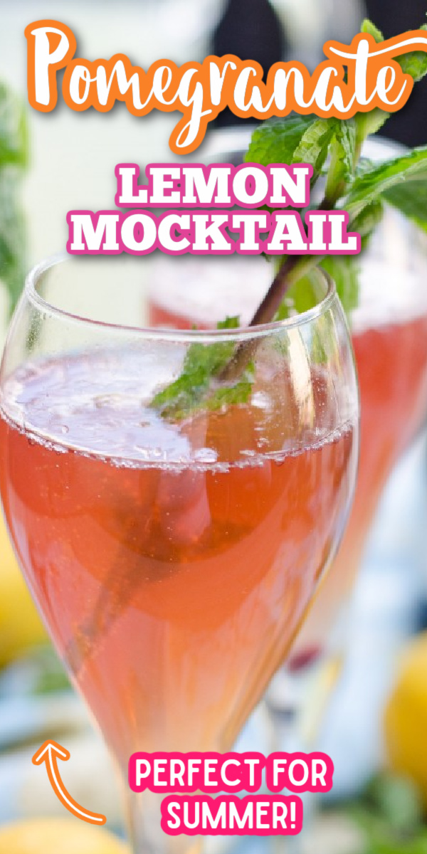 This non-alcoholic Pomegranate Lemon Spritzer is one of the best summer drink recipes! To turn it into a cocktail, just add one of your favorite white wines, or even vodka! #gogogogourmet #pomegranatelemonspritzer #mocktailrecipes #summerdrinkrecipes via @gogogogourmet