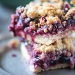 Blueberry Crumb Bars | @gogogogourmet