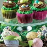 These Easter Birds Nest Cupcakes are an adorable and easy dessert to make for your Easter egg hunts! Two quick decorating maneuvers and some Easter candy are all that it takes!   @gogogogourmet
