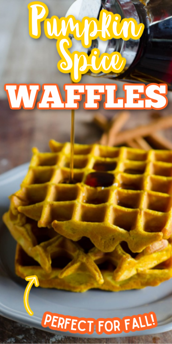 This easy Pumpkin Spice Waffles recipe is the best way to start fall mornings! Top with a healthy amount of maple syrup, and it might become your new favorite breakfast! #gogogogourmet #pumpkinspicewaffles #easypumpkinrecipes #fallbrunch via @gogogogourmet