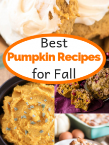 Collage of pumpkin recipes